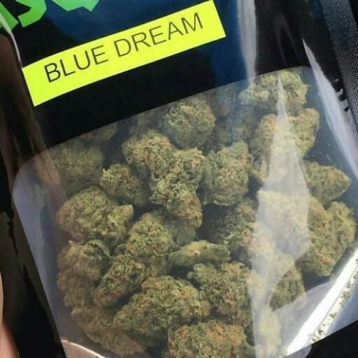 Buy blue Dream online