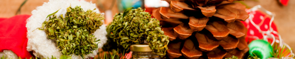 Best-Cannabis-Strains-for-Christmas-2020